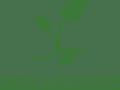 Kakou Partner logo_02